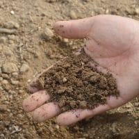 Choisir une plateforme de compostage adaptée à vos besoins